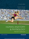 Human Anatomy And Physiology (custom Edition)