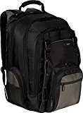 Targus CityGear Chicago Backpack Case for 16-Inch Notebooks, Black (TCG650)