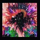 High Visceral (B-Sides)