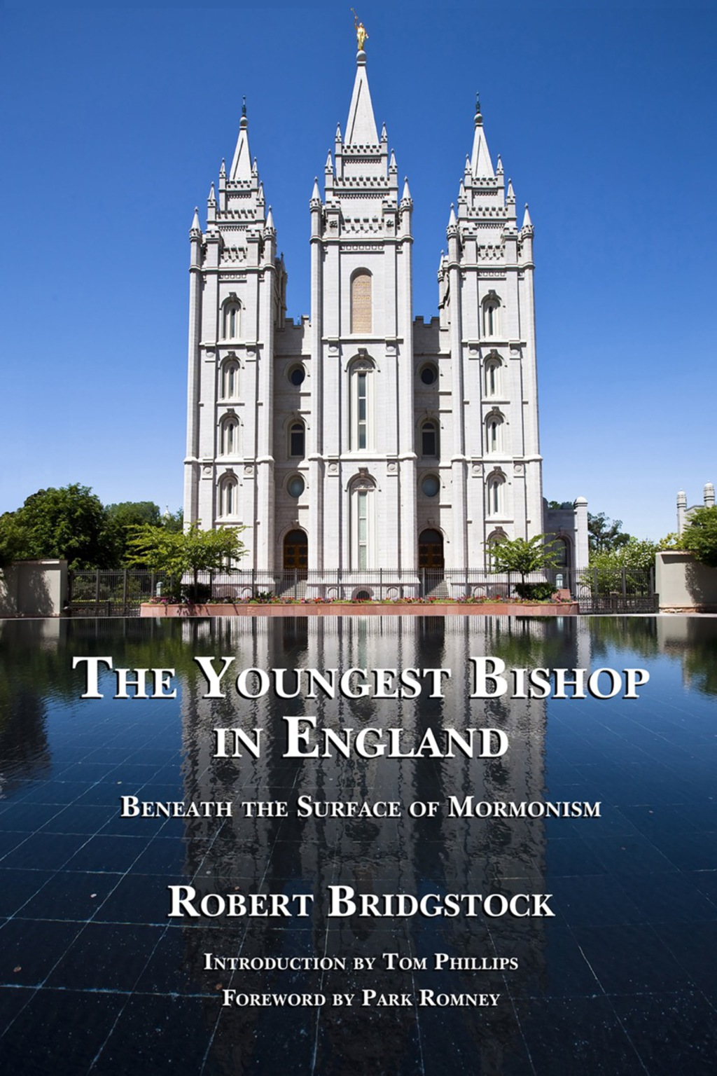 The Youngest Bishop In England (ebook)