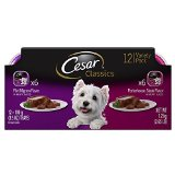 CESAR Canine Cuisine Variety Pack Filet Mignon & Porterhouse Steak Dog Food (Two 12-Count Cases)