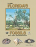 For 50 million years Florida was home to hordes of strange and wonderful animals