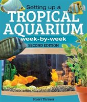 Setting Up A Tropical Aquarium: Week By Week
