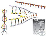 K'NEX Education – DNA Replication and Transcription Set – 525 Pieces – Ages 10  Science Educational Toy