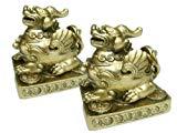 Betterdecor A Pair of Feng Shui Pi Yao/Pi Xiu