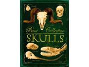 Skulls Bone Collection