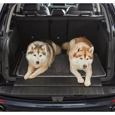 Cargo Floor Protector For Dogs