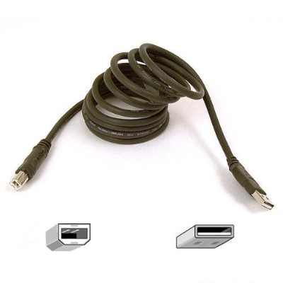 Belkin F3u133-06 Pro Series - Usb Cable - Usb (m) To Usb Type B (m) - Usb 2.0 - 6 Ft - Molded - For Expressbus 7-port  Plus  Usb Direct Connect