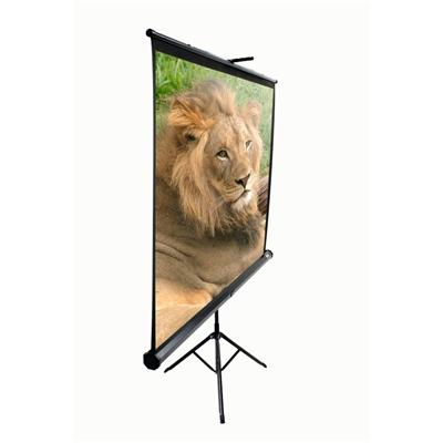 Tripod Series T99UWS1 - projection screen with tripod - 99 in ( 251 cm )