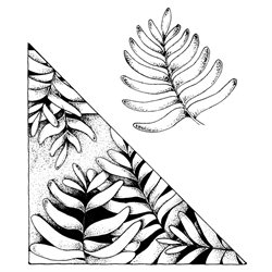 Stacy Stamps Cling Mounted Stamps-Ferns