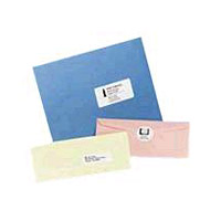 Avery Dennison 5161 White - A4 (8.25 In X 11.7 In) 100 Pcs. (5 Sheet(s) X 20) Address Labels