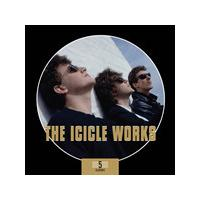 The Icicle Works - 5 Album Box Set (Music CD)