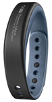 Garmin Vivosmart(blue)-large Fitness Activity Tracker