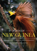 New Guinea, the largest tropical island, supports a spectacular bird fauna characterized by cassowaries, megapodes, pigeons, parrots, kingfishers, and owlet-nightjars, as well as the iconic birds of paradise and bowerbirds