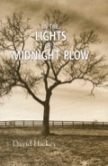 In The Lights Of A Midnight Plow