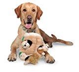 Outward Hound 31003 Hide A Squirrel Plush Dog Toy Squeak Toy 4 Piece, Jumbo, Brown