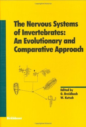 The Nervous Systems of Invertebrates: An Evolutionary and Comparative Approach (Experientia Supplementum)