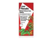 Floradix Iron - Flora Inc - 80 - Tablet