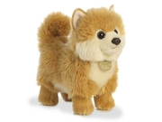 Pomeranian Puppy 9 Inch Miyoni Tots - Stuffed Animal By Aurora Plush (26242)