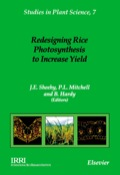Redesigning Rice Photosynthesis To Increase Yield