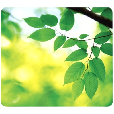 Fellowes 5903801 Recycled Mouse Pad Leaves - Mouse Pad - Multicolor