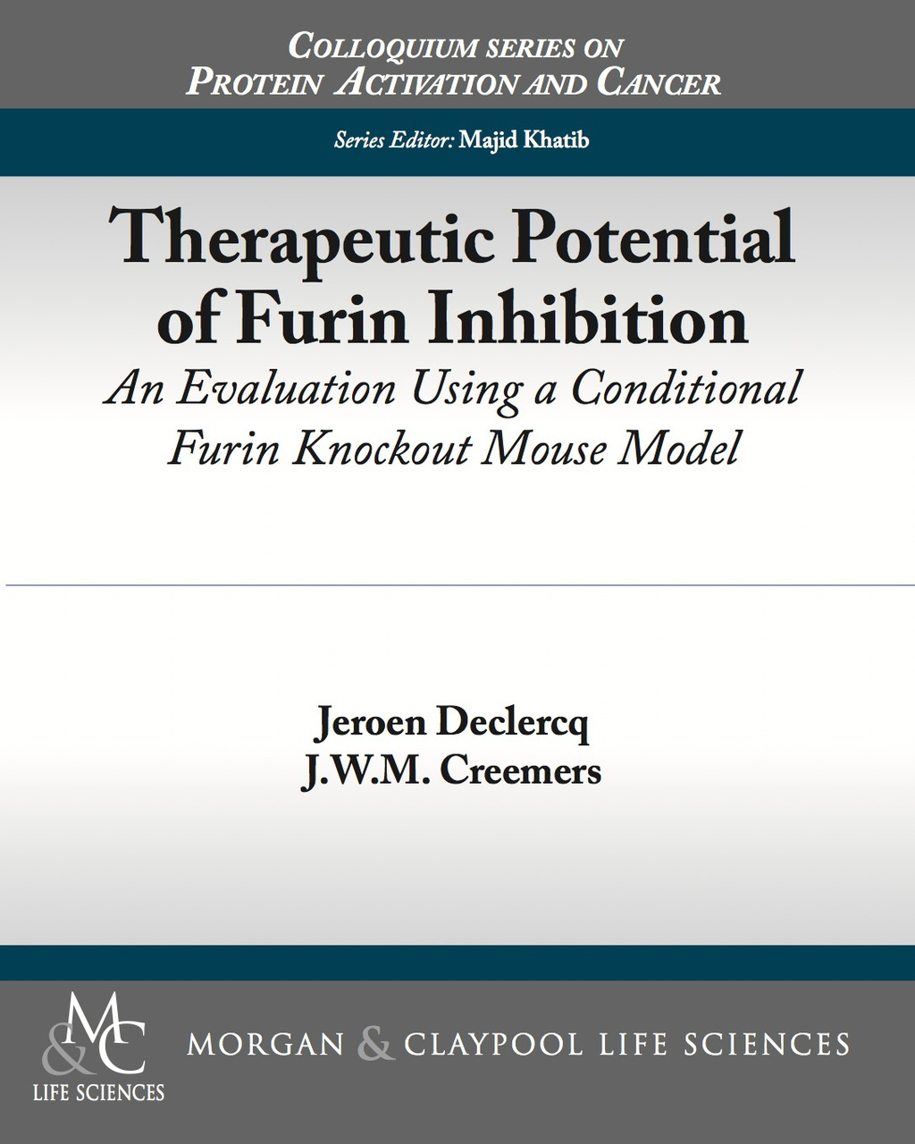 Therapeutic Potential Of Furin Inhibition (ebook)