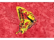 Butterfly On Red Fabric Placemat