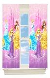 Disney Princesses Grand Beauty Room Darkening Panel, 42 by 63-Inch