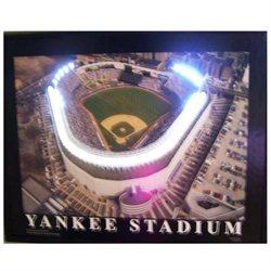 Yankee Stadium Neon LED Art Picture