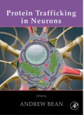 Protein Trafficking In Neurons