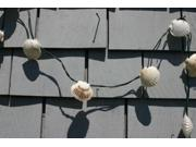 Scallop Shell String Lights Type: Plaques and Panels