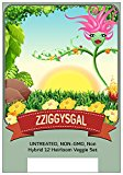 UNTREATED, NON-GMO, Non Hybrid 12 Heirloom Veggie Seeds by Zziggysgal