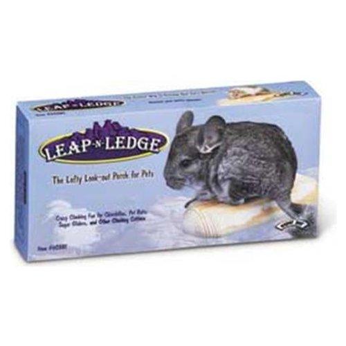Super Pet Leap-n-Ledge