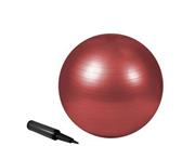 Zenzation 55cm exrcs ball Red