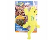 Cosmic Lizard- Groovy Gecko Multi