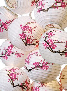 Plum Blossom Paper Lantern Set w/ Light #ml-21