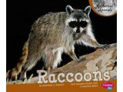 Raccoons (pebble Plus)