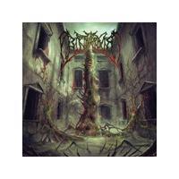 Birth Asphyxia - Human Obelisk (Music CD)