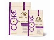 Wellness Core Kitten