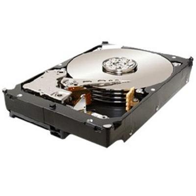 Constellation ES ST32000644NS - hard drive - 2 TB - SATA-300