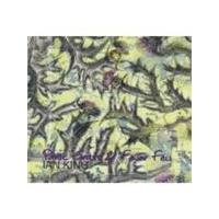Iain King - Panic Grass And Fever Few (Music CD)