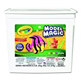 Crayola 232413 Model Magic Modeling Compound, 8 oz each/Neon, 2 lbs.