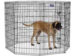 Midwest 558-48dr 48 Inch High Exercise Pen
