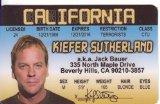 Kiefer Sutherland Fun Fake ID License