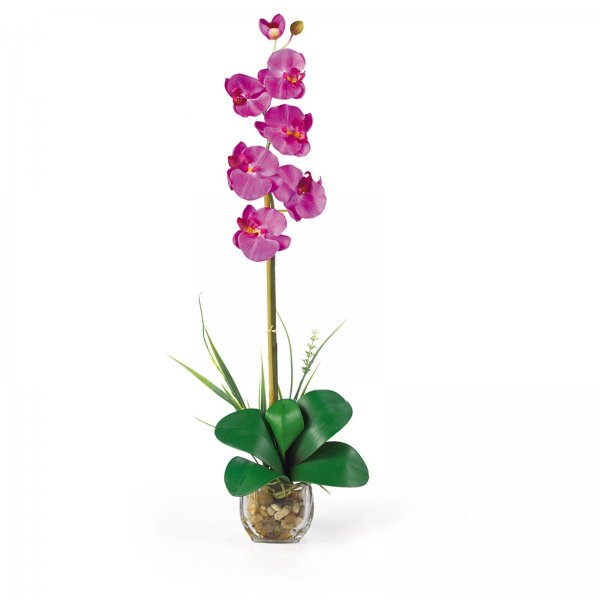 Single Phalaenopsis Liquid Illusion Flower Arrangement - by Nearly Natural - 1104-OR