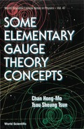 Some Elementary Gauge Theory Concepts