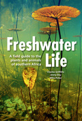 Freshwater life – the first illustrated field guide of its kind for the wider southern African region – describes a vast range of plant and animal groups in a single volume