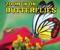 Zoom In On Butterflies