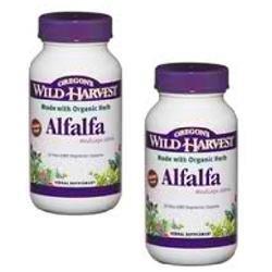 Oregon's Wild Harvest Alfalfa Tops