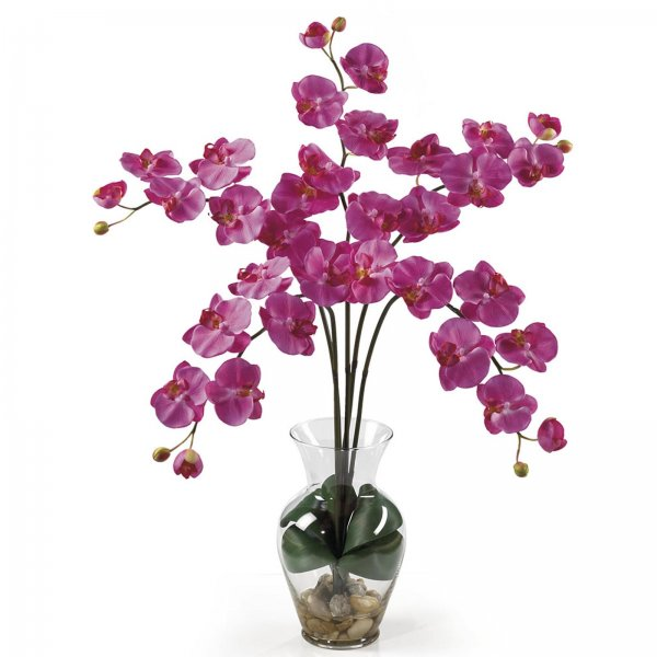 Phalaenopsis Liquid Illusion Flower Arrangement - by Nearly Natural - 1106-DP